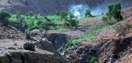 Plantaciones de marihuana en  la parte alta de Huaral