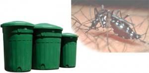 denguee1