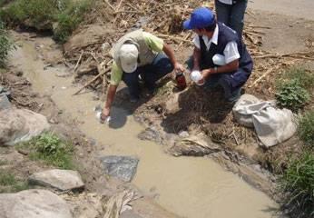 Trabajos realizados por la Comisión  ambiental  de Aucallama