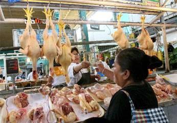 Preció del pollo bajo a S/. 4.60 el kilo.