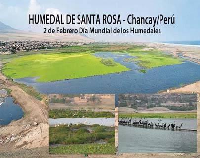 Día Mundial de los Humedales se intentará revalorar el humedal de Santa Rosa (Chancay)