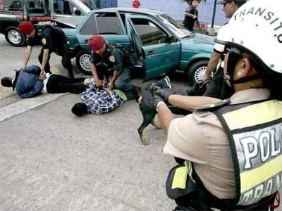 policia captura delincuentes