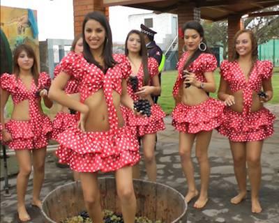 """Al mediodía de hoy viernes se inaugura la """"II Vendimia Huaral 2014"""""""
