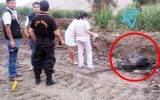 Criminales asesinan, despedazan e incendian el cadáver de su víctima en Andahuasi