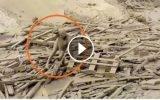 Una mujer emergió de los escombros tras huaico en Punta Hermosa