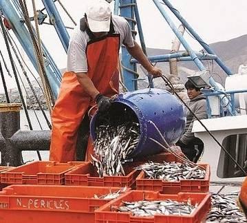 Produce Primera temporada de pesca de anchoveta inicia el   sábado 22